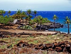 looking-over-lapakahi-village-kohala-coast-hawaii-photo-by-donnie-macgowan_edited-1